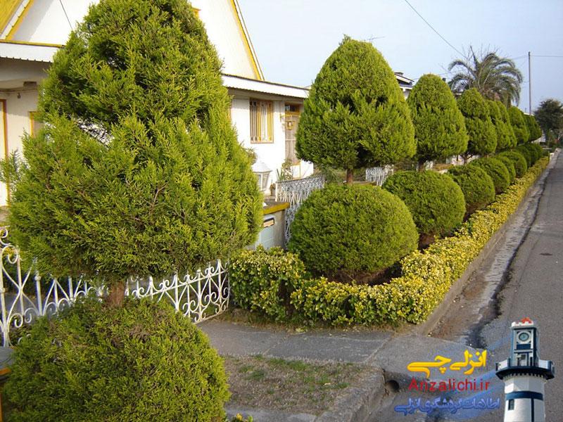 فروش-زمین-بندرانزلی-دهکده ساحلی-۴۶۸متر زمین